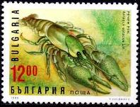 http://www.pichome.ru/images/2014/09/09/xEngKJq4M.jpg