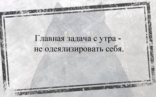 1PzcR.jpg